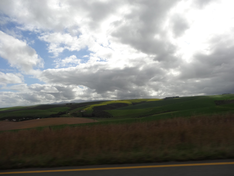 Fahrt nach Cape Town