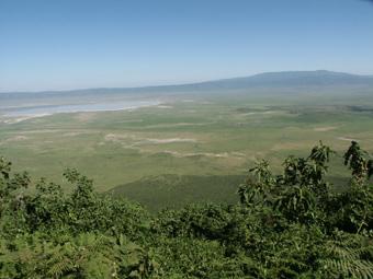 28-01-03-TA-Ngorongoro.jpg