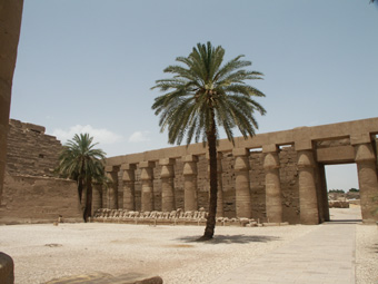 3-5-03-AE-Luxor.jpg
