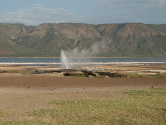 8-02-03-KE-Bogoria.jpg