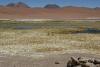 Altiplano Landschaften