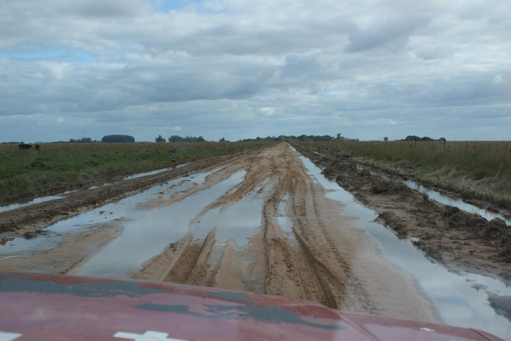 Fahrt zu der Lagune Ibera Argentinien