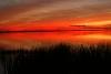 Sonnenuntergang Laguna Ibera